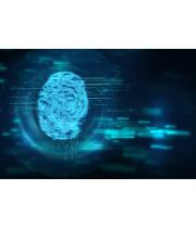 Надежная защита: ученые разработали ультразвуковую технологию идентификации отпечатков пальцев