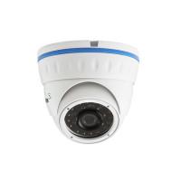 Видеокамера Arax RAV-100-Bir