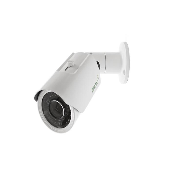 Видеокамера Arax RNW-201-V212ir