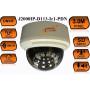 Купольная IP Камера видеонаблюдения J2000IP-D113-Ir1-PDN